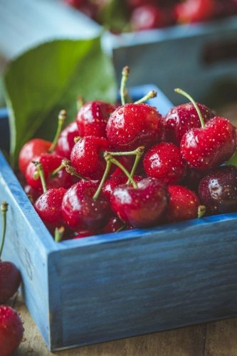 - Cherries: 150 Lined Journal Pages / Diary / Notebook Featuring Box of Fresh Picked Cherries on the Cover