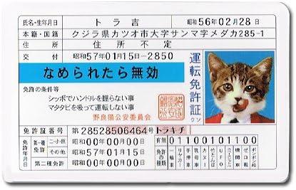 Amazon.co.jp: なめんなよ 免許証 024 なめねこ: おもちゃ