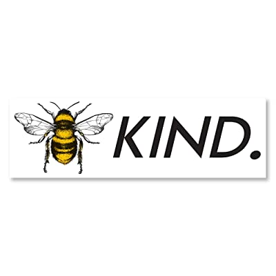 IT'S A SKIN Bee Kind | Vinyl Sticker Decal for Laptop Tumbler Car Notebook Window or Wall | Funny Novelty Decal: Automotive