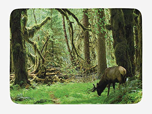 Weeosazg Rainforest Bath Mat, Roosevelt Elk in Rainforest Wildlife National Park Washington Antlers Theme, Plush Bathroom Decor Mat with Non Slip Backing, 23.6 W X 15.7 W Inches, Green Brown]()