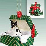 Conversation Concepts Rat Terrier Gift Box Green Ornament