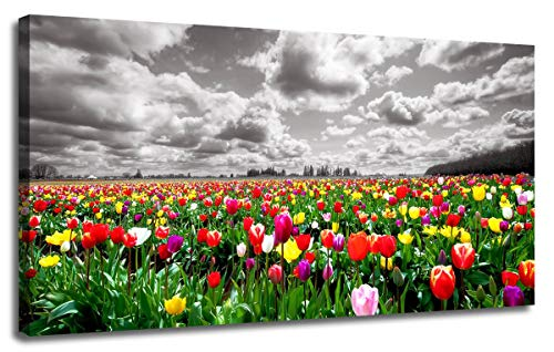Paintings Floral Still Life - Canvas Wall Art Tulip Florals Field Picture Prints Landscape Grey Sky Nature Wild Flowers Artwork One Panel 40