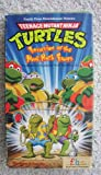 Teenage Mutant Ninja Turtles - Invasion of the Punk Rock Frogs