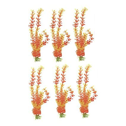 Amazon.com : eDealMax acuario de la hoja de plástico Base de cerámica Silmulated Hierba Planta Aquascape Naranja de la decoración 6pcs : Pet Supplies