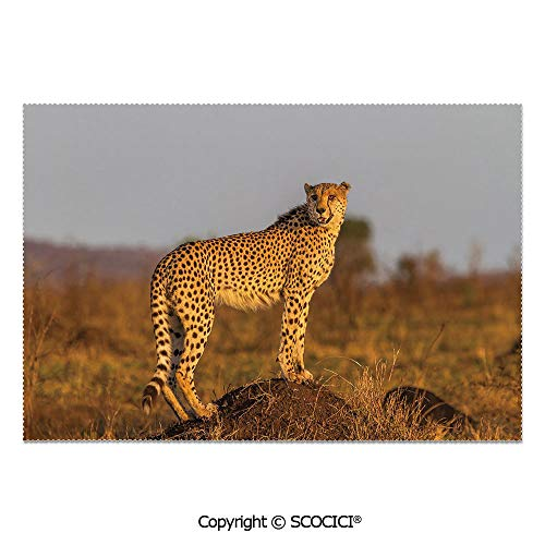 (SCOCICI Place Mats Set of 6 Personalized Printed Non-Slip Table Mats African Wild Animal Cheetah Standing on Termite Mound Savannah Nature View Decorative for Dining Room Kitchen Table Decor)