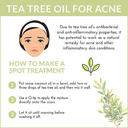 ArtNaturals 100% Pure Tea Tree Essential Oil - (4 Fl Oz / 120ml) - Natural Premium Melaleuca Therapeutic Grade - Great with Soap and Shampoo, Face and Body Wash - Antifungal Treatment for Acne, Lice