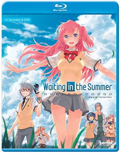 Waiting in the Summer/ [Blu-ray]