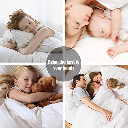 THREAD SPREAD 600-Thread-Count Best 100% Egyptian Cotton Sheets & Pillowcases Set