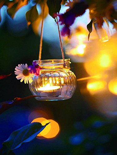 15.75 in. x 11.75 in. Tealight Candle with Daisy Scene LED Lighted Canvas Wall Art -  NorthLight, 32039542