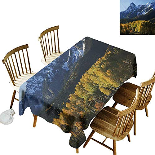 Hall Rectangular Tablecloth W54 x L90 Landscape Snow Village Mountain Retreat in Colorado Park Pine Region Peak Photography Print Green Blue Great for Family Outdoors Restaurant Party Wedding -