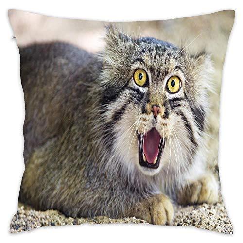 Pallas's Cat Pillowcase for Home Sofa Livingroom Decorative Throw Pillow Case Cushion Cover 18