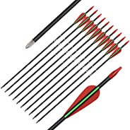 Archery Recurve Bow Arrows Fiberglass Arrow 24/26/28 Inch Hunting Shooting Practice Target for Beginners Kids