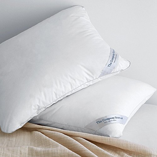 The Company Store LaCrosse LoftAire Pillow 2-pack, Standard - Company Store Pillow