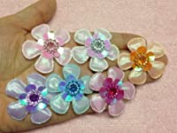 30pc Assorted Glitter Fabric Flowers Padded Appliques PA43 [Office Product]