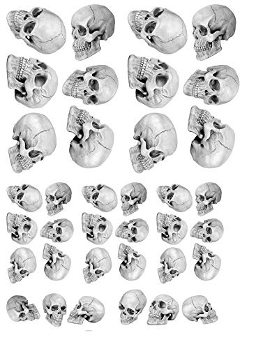 Skull Mania - 20354 - Ceramic Decal - Enamel Decal - Glass Decal - Waterslide Decal - 3 Different Size Sheet (Images) to Choose from. Choose Either Ceramic (Enamel) or Glass Fusing Decals