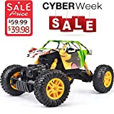 Best off road rc truck - DOUBLE E RC Cars 1: 18 Dual Motors Review