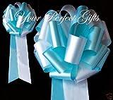 10 TEAL BLUE WHITE WEDDING 9'' PEW BOW BRIDAL DECORATION