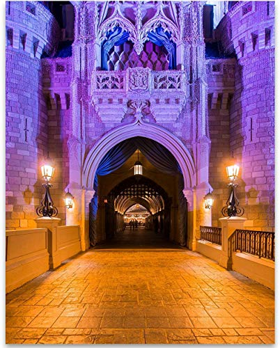 - Walt Disney World - Through These Gates - 11x14 Unframed Art Print - Makes a Great Gift Under $15 for Disney Fans