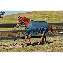 Saxon. 600D Standard Neck Medium Turnout Blanket Blue/Evergreen 72""