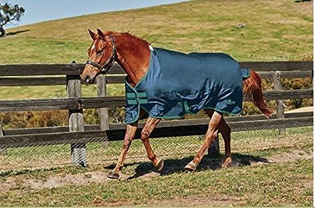 Saxon. 600D Standard Neck Medium Turnout Blanket Weatherbeeta USA Inc.