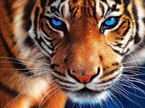 21secret 5D Diamond Diy Painting Full drill Handmade Blue Eyes Tiger Portrait Cross Stitch Home Decor Embroidery Kit