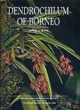 Dendrochilum of Borneo, Jeffrey J. Wood, 9838120472
