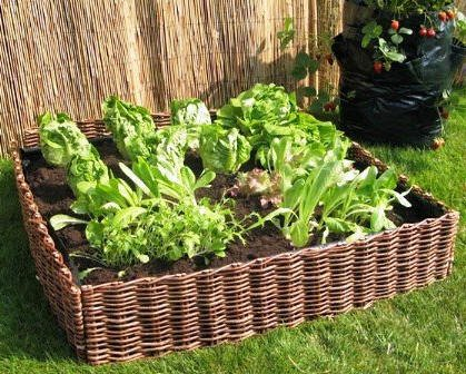 Complete Woven Willow Raised Bed Kit, 48u0026quot;W X 48u0026quot ...