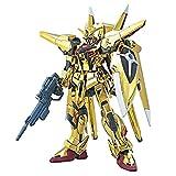 #40 Gold Oowashi Akatsuki Gundam 1/144 Model Kit HG