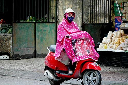 Moped Jacket - 5