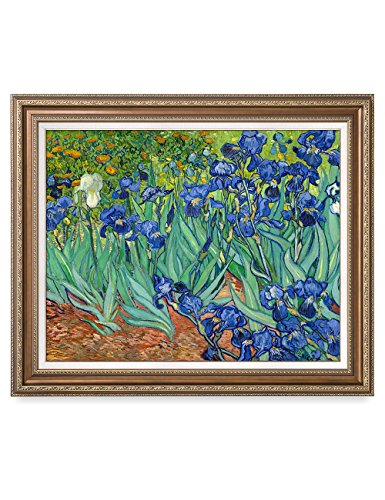 - DECORARTS - Irises in The Garden, Vincent Van Gogh Art Reproduction. Giclee Print& Framed Art for Wall Decor. 30x24, Framed Size: 35x29