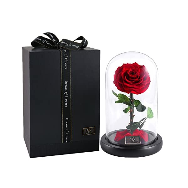Beauty And The Beast Rose,Enchanted Rose, Glass Dome Black wood Base, Valentine's Party Gifts, Wedding Gifts, Best Gift for Her (red-1)