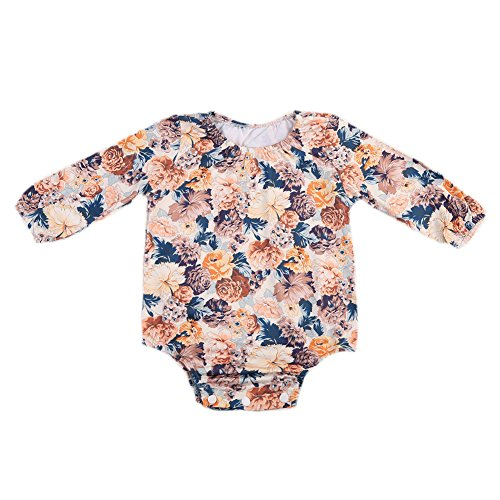Floral Long Sleeve Onesie (Infant Baby Girls Long Sleeve Lace Floral Romper Bodysuit Outfit Clothes (6-12 Months, Brown))