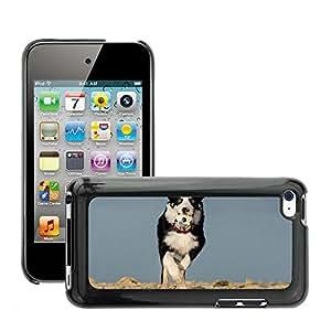 Etui Housse Coque de Protection Cover Rigide pour // M00117143 Border Collie perro pastor inglés // Apple ipod Touch 4 4G 4th