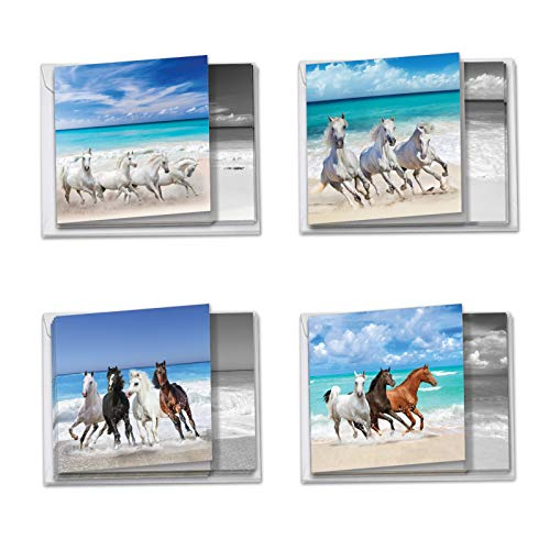 12 Boxed & Assorted Gallops and Greetings Blank Note Cards (4 x 5-1/8) - Assorted Animal Greeting Cards of Wild Horses on a Beach - All Occasion Stationery Notecards (w/Envelopes) MQ5074OCB-B3x4
