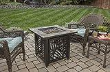 Endless Summer, GAD1429SP, Gas Outdoor Fireplace