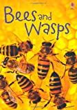 Bees & Wasps (Usborne Beginners)