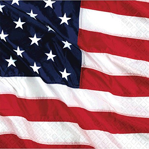 Patriotic Flying Colors - Flying Colors Beverage Napkins Patriotic 4th of July Party Disposable Tableware, 2-ply, Paper, 5