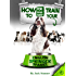 How to Train your Springer Spaniel