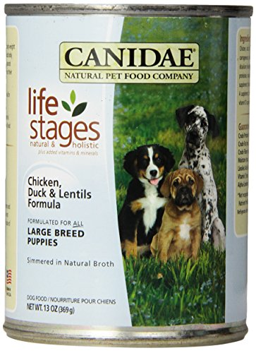 CANIDAE 404182 12-Pack Large Breed Puppy Duck and Lentils, 13-Ounce