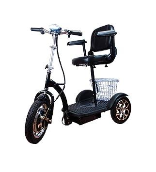 1fe8e42d9ff Triciclo Eléctrico Adultos - Silla de Ruedas Eléctrica Ciclomotor Scooter  Movilidad Reducida Minusválido  Amazon.es  Deportes y aire libre