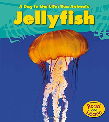 Jellyfish (A Day in the Life: Sea Animals) ()