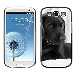 Be Good Phone Accessory // Dura Cáscara cubierta Protectora Caso Carcasa Funda de Protección para Samsung Galaxy S3 I9300 // Curly Coated Black Short Hair Retriever Dog