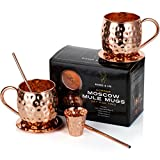 Moscow Mule Copper Mugs: Set of 2 x 18oz Mug, 2 x Coaster, 2 x Straw, 1 x Shot Glass/Cup & Bonus Cocktail Recipe eBook - 100% Copper Accessories & Kit: Handmade & Hammered - The Perfect Kitchen Gift