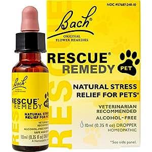 Bach dog remedies