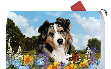 Australian Shepherd Blue Merle Mailbox Cover