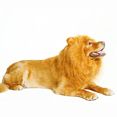 Costumes Of Dogs (Thedogloveit Dog Hats Lion Mane, Interesting Costumes Gift, Wig, Medium to Large)
