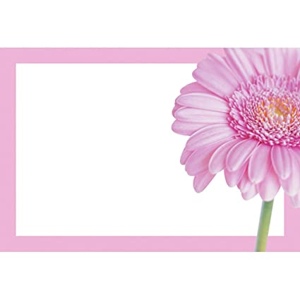 50 GREEN FLORIST CARDETTES PACK OF 50 CARD HOLDERS