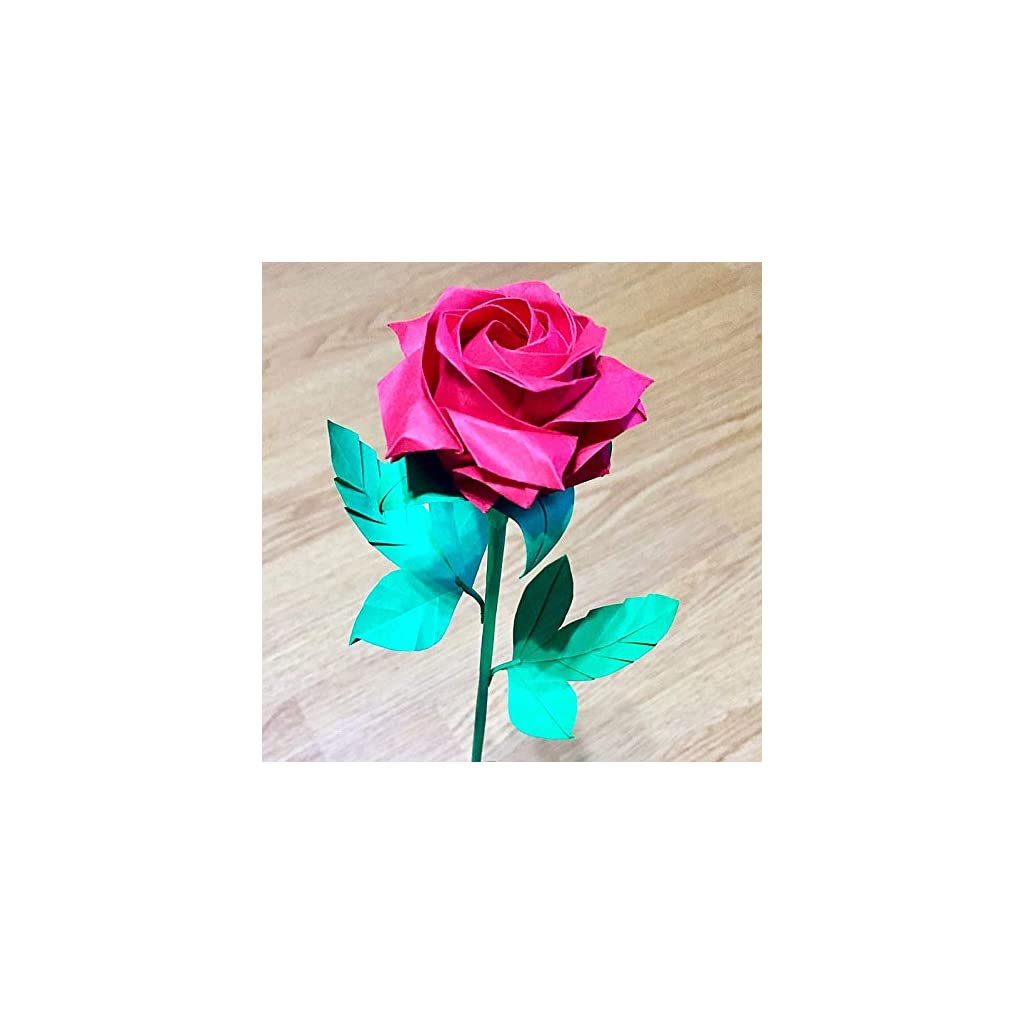 Amazon.com: Origami Pentagon rose Paper artificial flower bush ... | 1024x1024