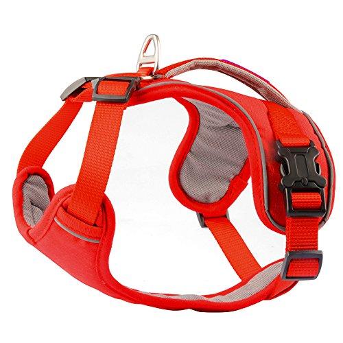 PETLOFT Dog Harness, Gentle Leader, No Pull Dog Harness, Neck/Chest Adjustable Dog Harness, Dog Harness for Small Medium Large Dogs (Medium, -