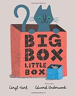 Book Cover: Big Box Little Box